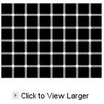 SEEing is Believing (Optical Illusions) - Dots