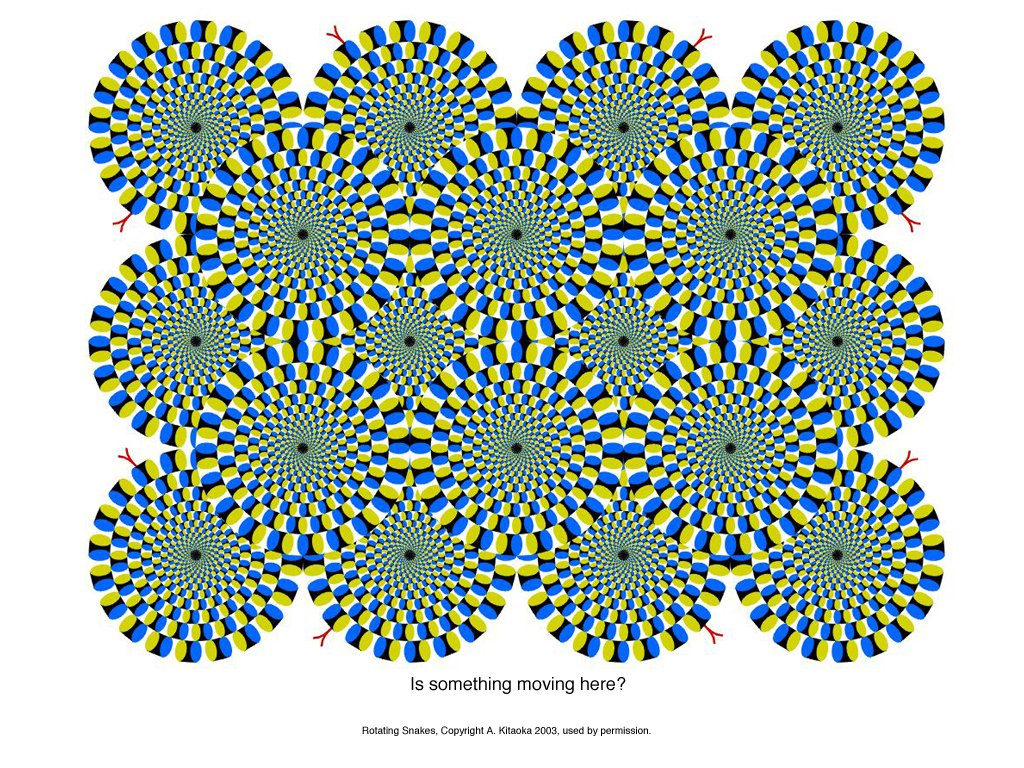 SEEing is Believing (Optical Illusions) - Spin